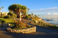 Дорожки парка Heisler благоустраиванные над бухтой водолазов приставают зону к берегу, пляж Laguna, Калифорнию. стоковые изображения rf