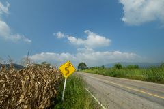Дорожные знаки около дороги Стоковая Фотография