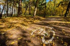 Дорожный знак велосипеда в парке на осени Стоковая Фотография