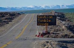 Дорожный знак Tumbleweeds предосторежения Стоковые Изображения RF