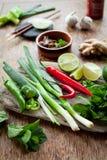 Доска въетнамских пищевых ингредиентов красочная Стоковое Изображение RF