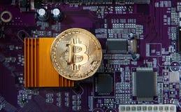 Доска процессора электрического счетнорешающего устройства Bitcoin золота Стоковые Изображения