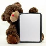 Доска Erase медведя Brown сухая стоковая фотография
