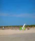 Доски прибоя на пляже Стоковая Фотография RF
