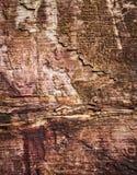 Доски структуры старые коричневые деревянные Стоковые Изображения
