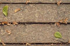 Доски с листьями Стоковые Изображения RF