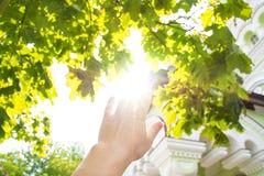 Достигаемости руки для солнца Стоковые Изображения