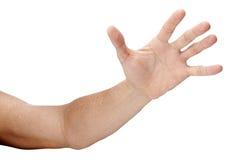 достигать изолированный рукой вне Стоковое Фото