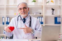 Достигший возраста мужской кардиолог доктора с моделью сердца стоковые изображения rf