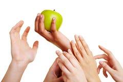 достижение рук яблока стоковое изображение rf