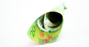 Долларовая банкнота 20 канадцев Стоковая Фотография RF