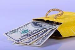 Доллары банкнот в пакете Стоковые Изображения RF