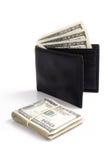 Доллары и бумажник Стоковые Изображения RF