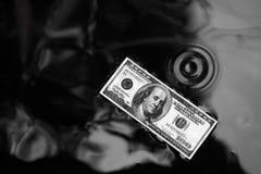 Доллар на поверхности воды, черной предпосылке стоковое изображение rf