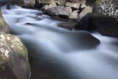 Долгая выдержка II речных порогов заводи оленей стоковое изображение rf