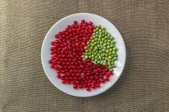 Долевая диограмма красной смородины и зеленых горохов Стоковое Изображение