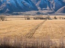 Долина антилопы, Калифорния Стоковое Изображение RF