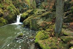 Долина ландшафта Doubrava реки Стоковые Фотографии RF
