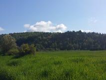 Долина вишни стоковое изображение