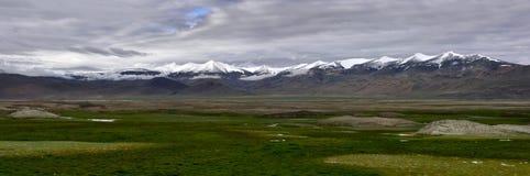 Долина высокой горы Тибета в лете: цепи высоких пиков с снегом на пиках и огромных зеленых полях выгона на ноге  Стоковые Изображения