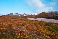 Долина в горах Стоковое Изображение RF
