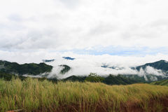 Долина в тумане Стоковая Фотография