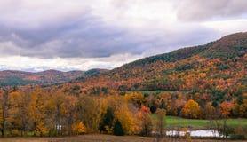 Долина в цветах падения стоковые фото