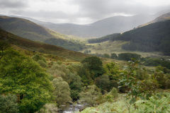 Долина в Galloway Forest Park Стоковая Фотография