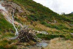 Долина гейзеров kamchatka Стоковое Фото