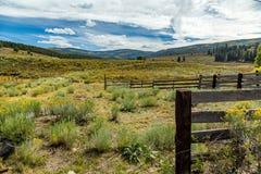 Долина горы Osha Стоковая Фотография RF