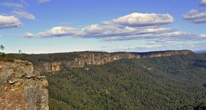 Долина кенгуру Стоковые Изображения RF