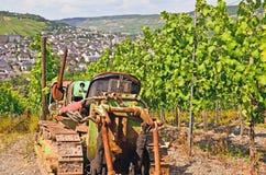 Долина Мозель - Германия: Взгляд к виноградникам около городка Bernkastel Kues Стоковые Изображения RF