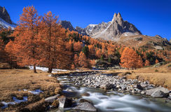 Долина осени стоковая фотография