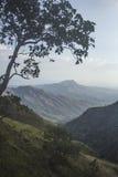 Долина Сан-Диего Стоковые Изображения