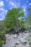 Долина ущелья горы духов горы Стоковые Фотографии RF
