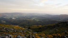 Долина цветка Стоковое фото RF
