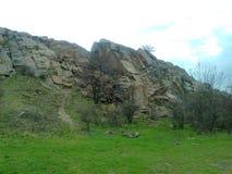 Долина черепашки реки южной Стоковое Изображение