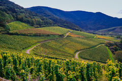 Долина Ahr, Германия Стоковые Изображения