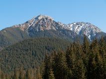 Долина Chocholowska в западном Tatras, Стоковое Изображение RF