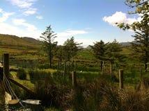 Долина Crownasillagh Стоковая Фотография