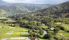 Долина Hanalei, Кауаи, Гавайи Стоковая Фотография