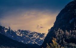 Долина Hollyford Стоковое Фото