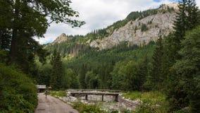 Долина Javorova в горах Tatry в Словакии Стоковая Фотография RF