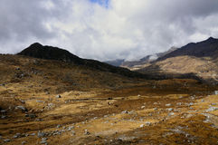 Долина Kupup, Сикким стоковое изображение