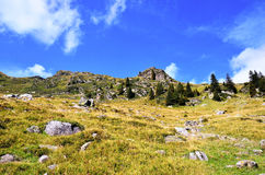 Долина Ladurns стоковые фотографии rf