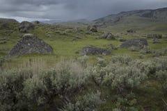 Долина Lamar Стоковое Изображение RF