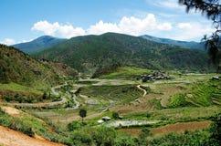 Долина Lobesa с монастырем Chimi Lhakhang стоковые изображения rf