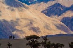 Долина Nubra и свои контрасты, Ladakh, Гималаи, Индия Стоковые Изображения RF