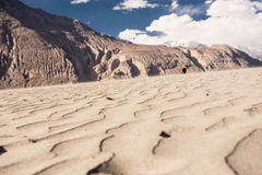 Долина Nubra Стоковые Фотографии RF