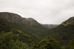 Долина Oribi Стоковые Изображения